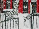 snowing monday morning 18.15x12