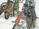 lido bikes 105 18x18