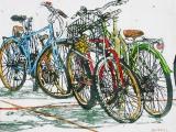 lido bikes 116 14x1775