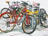 lido bikes 127 18x26