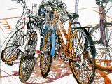 lido bikes 149 16x16