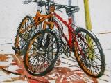 lido bikes 150 12x12