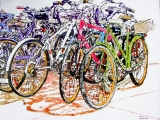 lido bikes 151 18x24