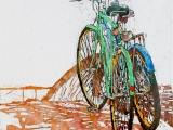 lido bikes 154 16 x 16