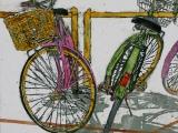 lido bikes 59 16.5x16.5