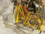 lido bikes 6 22.5x24