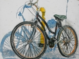 lido bikes 69 18x18
