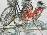 lido bikes 87 16x16