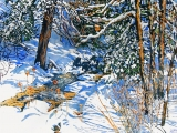 open stream after late winter snowfall 24x36