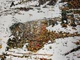 oct overnight snowfall 35 boy scout rd 1 24x32