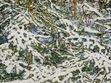 overnight snowfall 54 48x24