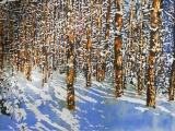 overnight snowfall 57 silence bonds with daylight 24x36