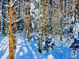 overnight snowfall 58 silence bonds with daylight 24x24