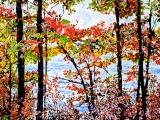 autumn on the pond 30 36x72
