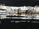 birch n reflection 11 12x24