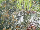 "pond reflection with grasses 24"" x 26"""
