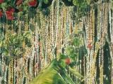 mardi gras beads balcony nawlins 26x20