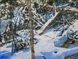 forest full of morning after a snowfall 12x16