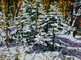 light in the forest 4 new snowfall 12x18