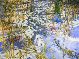 new pine in among shoreline grasses 24x36 wp